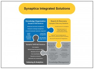 Synaptica Solutions